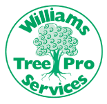 tree pruning perth